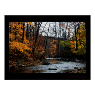 Autumn By The Stream Poster #0151