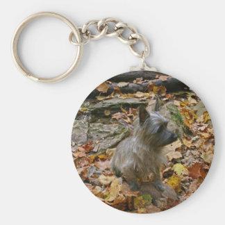 Autumn Cairn Keychain