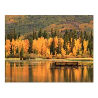 Autumn Calm Postcard