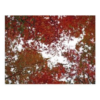 Autumn Candy Postcard