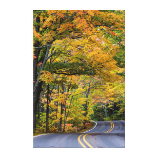 Autumn Canopy Of Color Along Highway 41 Canvas Print