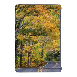 Autumn Canopy Of Color Along Highway 41 iPad Mini Retina Cases