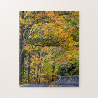 Autumn Canopy Of Color Along Highway 41 Jigsaw Puzzle