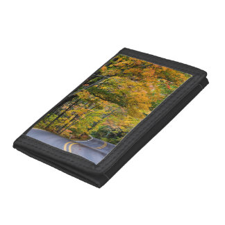 Autumn Canopy Of Color Along Highway 41 Trifold Wallets