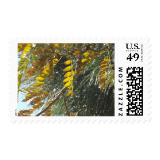 Autumn Canvas Postage Stamps