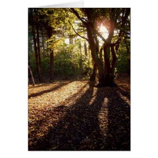Autumn | card
