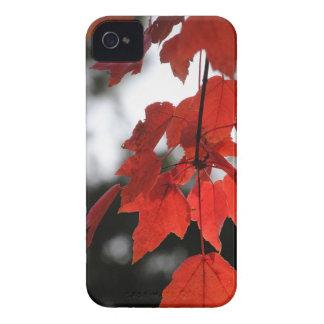 Autumn iPhone 4 Case-Mate Case