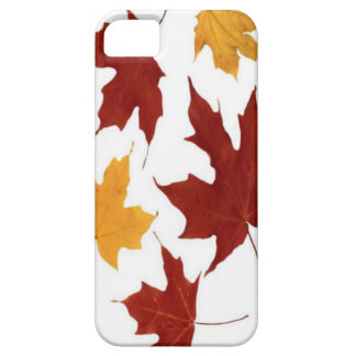 Autumn Case-Mate Case