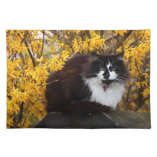 Autumn Cat Cloth Placemat