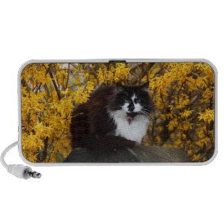 Autumn Cat Mini Speaker