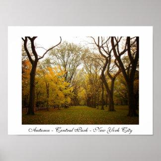 Autumn - Central Park - New York City Poster