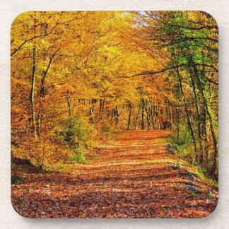 Autumn Coaster