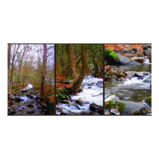 Autumn Collage Photocard Card