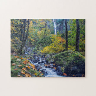 Autumn Color Along Starvation Creek Falls 2 Jigsaw Puzzles
