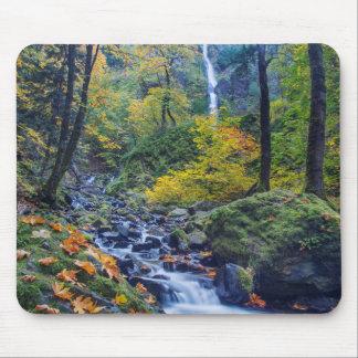 Autumn Color Along Starvation Creek Falls 2 Mouse Pad