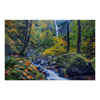 Autumn Color Along Starvation Creek Falls 2 Poster