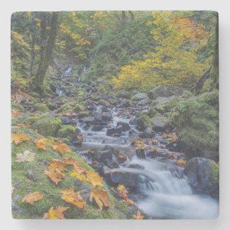 Autumn Color Along Starvation Creek Falls Stone Beverage Coaster