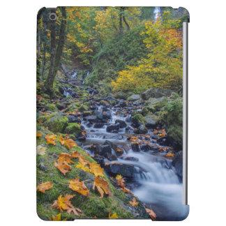 Autumn Color Along Starvation Creek Falls iPad Air Cover
