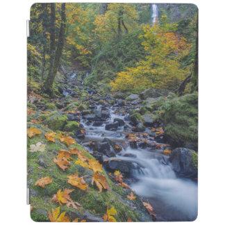 Autumn Color Along Starvation Creek Falls iPad Smart Cover