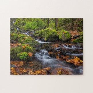 Autumn color along Starvation Creek Falls Jigsaw Puzzles