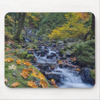 Autumn Color Along Starvation Creek Falls Mouse Pad