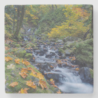 Autumn Color Along Starvation Creek Falls Stone Coaster