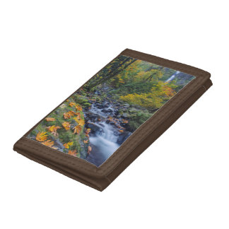 Autumn Color Along Starvation Creek Falls Tri-fold Wallets