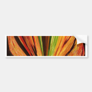 Autumn color and joy bumper sticker
