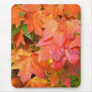 Autumn Color ~ Mousepad