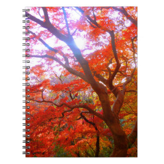 Autumn Color Notebook