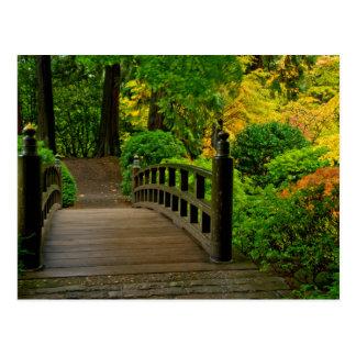 Autumn Color, Portland Japanese Garden Postcard