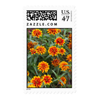 Autumn Colored Flowers Postage