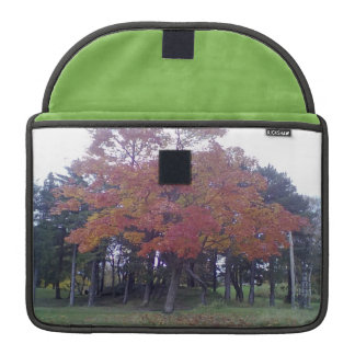 Autumn colored Tree MacBook Pro Sleeves