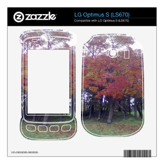 Autumn colored Tree Skins For LG Optimus S