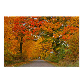 Autumn colorfull poster