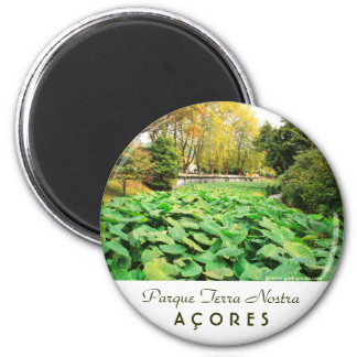 Autumn colors 2 inch round magnet