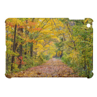 Autumn Colors At Independence State Park iPad Mini Cover
