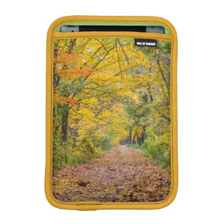 Autumn Colors At Independence State Park iPad Mini Sleeves