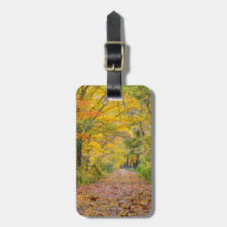 Autumn Colors At Independence State Park Luggage Tag