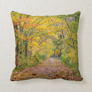 Autumn Colors At Independence State Park Throw Pillow