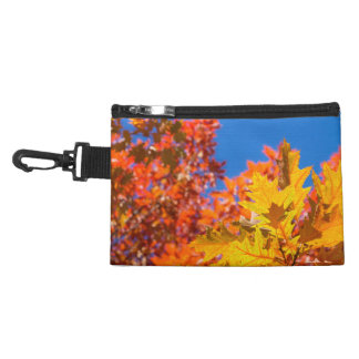 Autumn colors accessory bags