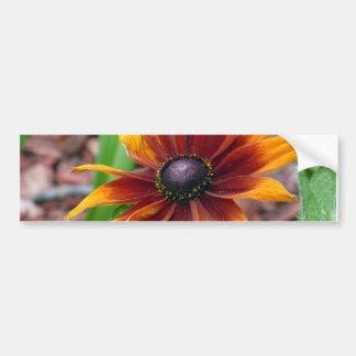 Autumn Colors Bumper Sticker