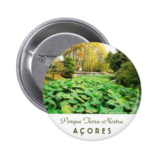 Autumn colors 2 inch round button
