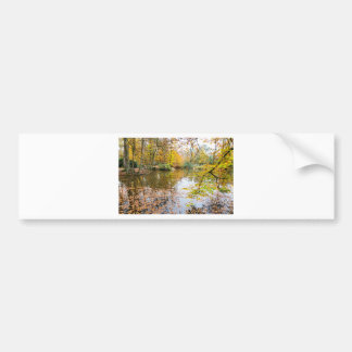 Autumn colors in forest with pond bumper sticker