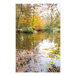 Autumn colors in forest with pond stationery