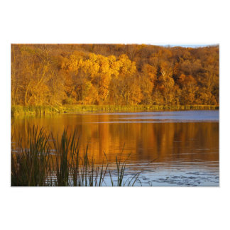 Autumn colors in Maplewood State Park near Photo Print