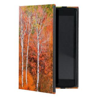 Autumn Colors In Rocky Mountains, Wyoming, USA iPad Mini Case