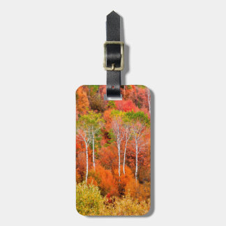 Autumn Colors In Rocky Mountains, Wyoming, USA Tag For Luggage