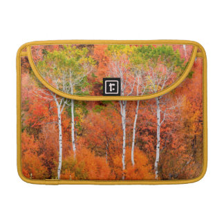 Autumn Colors In Rocky Mountains, Wyoming, USA Sleeve For MacBook Pro