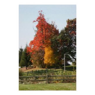 Autumn Colors, Michigan, 2010 Posters